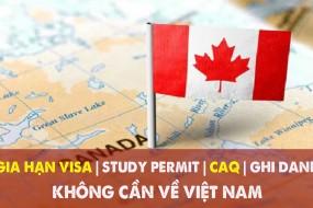 Gia hạn VISA - Study Permit - CAQ - Xin thư mời nhập học mới - Không cần về Việt Nam